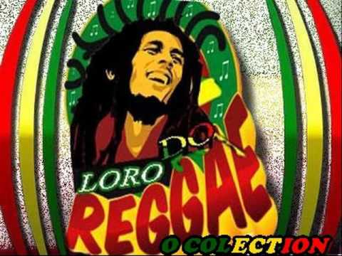 RAGGA DO PATO ROOTS