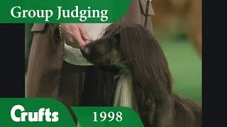 Subscribe to Crufts: http://bit.ly/CruftsSub This time, Crufts is t...