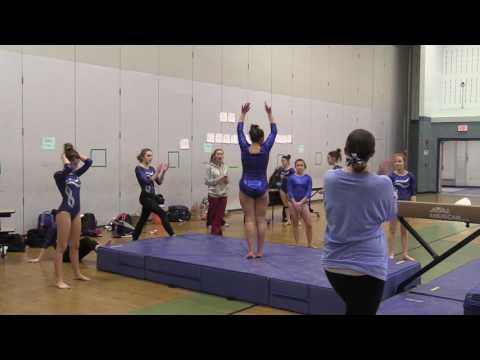 Gymnastics vs.  Lowell 1-25-17