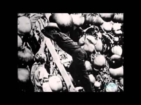 farming during the great depression