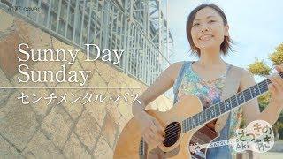 毎週更新!さつきのあき ちゃんねる☆ センチメンタル・バスさんの『Sunny Day Sunday』をワンコーラス、カバーしました。 【さつきのあきBlog...