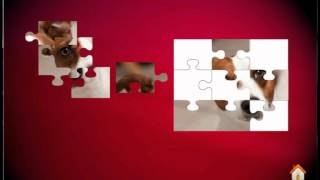Puppies jigsaw puzzles 2016