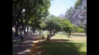 Parc de los Andes