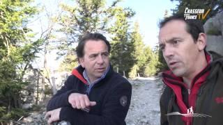 Sur les traces du loup en Haute Savoie
