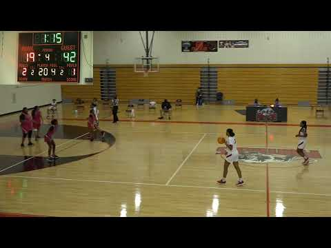 D. M. Therrell High School Panthers Live Stream