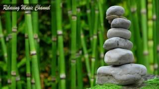 Хорошая Успокаивающая Музыка для Релаксации и Медитации: Спокойная Классическая Музыка, Звуки Леса