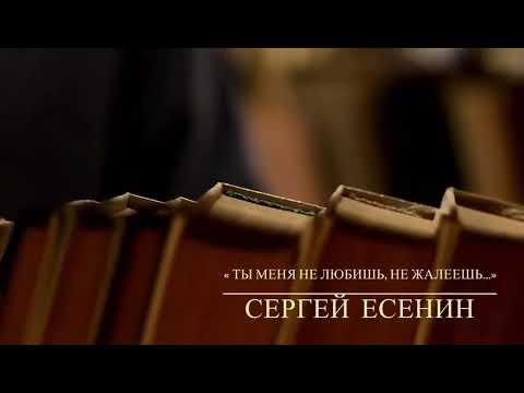 Изображение предпросмотра прочтения – ЕвгенияНиценко читает произведение «Ты меня не любишь, не жалеешь...» С.А.Есенина