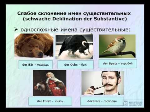 Немецкий язык склонение имн существительных таблица