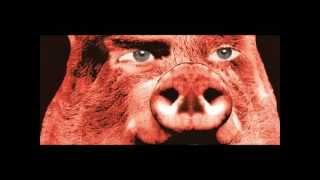 Pink Floyd - Animals, Pigs