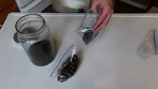 How to Store Coffee in the Freezer or Refrigerator : Coffee Making