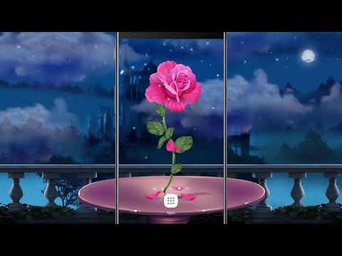 Petals Rose Falling Live Wallpaper Apps On Google Play
