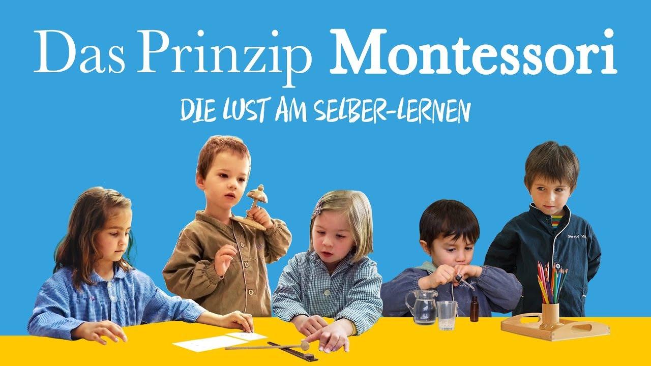 Kinotrailer Das Prinzip Montessori Die Lust Am Selber Lernen
