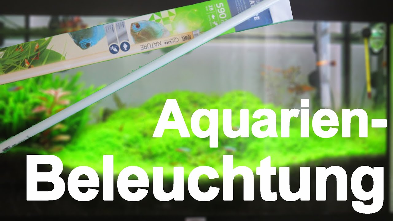 aquarium beleuchtung aquariumbasics 7 youtube. Black Bedroom Furniture Sets. Home Design Ideas