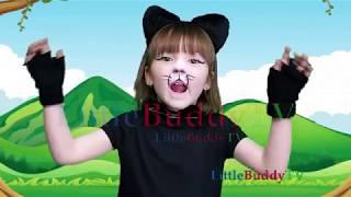 Cat Nursery Rhymes in Hindi/Urdu
