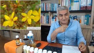Sarı Kantaron Nedir? Sarı Kantaronun Faydaları Nelerdir? Doğal Antidepresan Nedir?