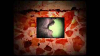 Niñosaurios - Tonto