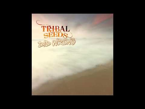 Tribal Seeds- Did Wrong
