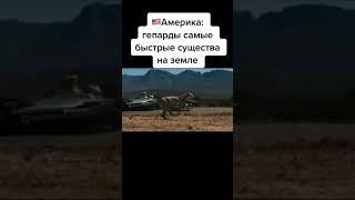ПРИКОЛЫ ПРО ФИЗРУКА-АМЕРИКА VS РОССИЯ СМЕШНЫЕ ВИДЕО