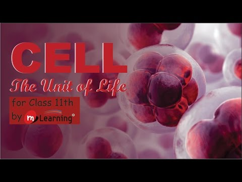 CELL THE UNIT OF LIFE: CELL STRUCTURE - 01 For Class 11th an