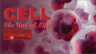 CELL THE UNIT OF LIFE: CELL STRUCTURE - 01 For Class 11th and AIPMT