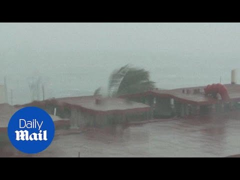 Strongest hurricane ever in Western hemisphere makes landfall - Daily Mail
