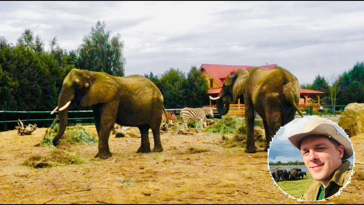 Elefantenflüsterer