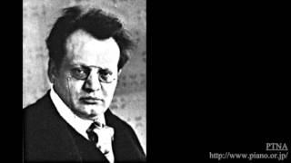 レーガー: J.S.バッハの主題による変奏曲とフーガ ロ短調,Op.81 Pf.トーマス・ヘル:Hell,Thomas