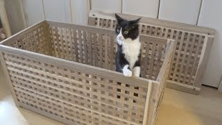 Make a new cat toilet with IKEA furniture