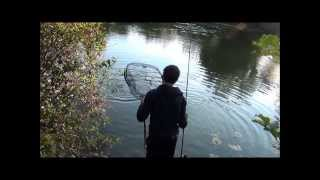 Mit Frolic auf Karpfen am Vereinsgewässer Full-HD
