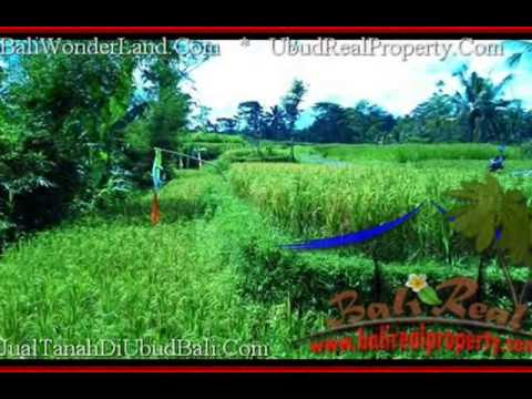 Beautiful LAND SALE IN UBUD BALI TJUB497