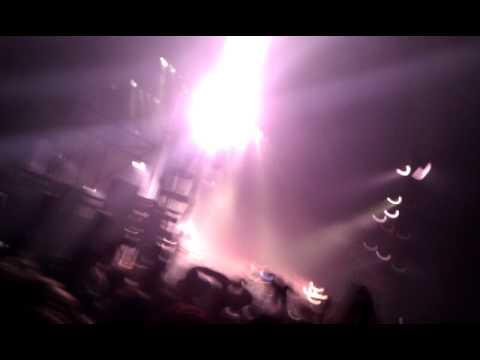 Fluorescent Adolescent Live