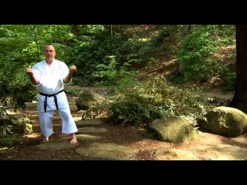 >> Free Watch Sanchin Kata: Three Battles Karate Kata (YMAA)