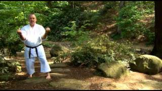 Sanchin Kata (YMAA Karate DVD) Kris Wilder サンチン  karate video