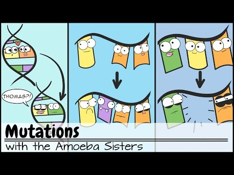Mutations (Updated)