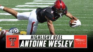 Antoine Wesley Texas Tech Football Highlights - 2018 Season | Stadium