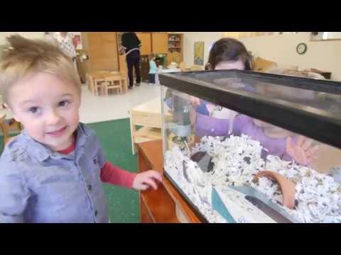 Rock Prairie Montessori  Intro 2018