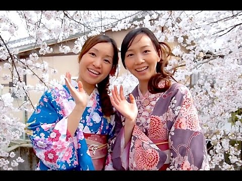 Moments in Kyoto - Sakura | Real Beauty Cherry Blossoms Kyoto Japan 京都の桜 着物美人と夜桜 京都観光