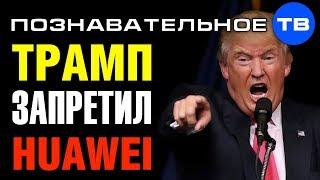 Почему Трамп наказал китайский HUAWEI? (Познавательное ТВ, Артём Войтенков)