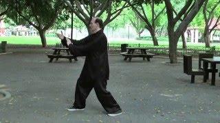 Дмитрий Дейч: форма тайцзицюань стиля Чен Панлин