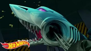Mutant Mayhem | The Origin of Awesome | Hot Wheels
