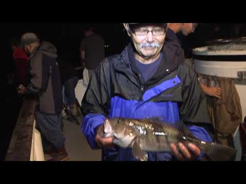 Twilight Fishing In Long Beach