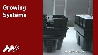 #40 - Hydroponics vs Aeroponics vs Soil Growing Systems