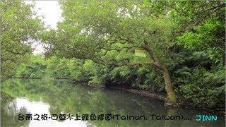 四草水上綠色隧道....... (Tainan, Taiwan台南之旅)