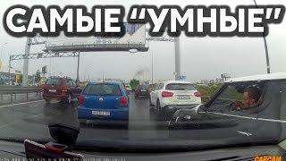 Подборка САМЫХ УМНЫХ водителей 265
