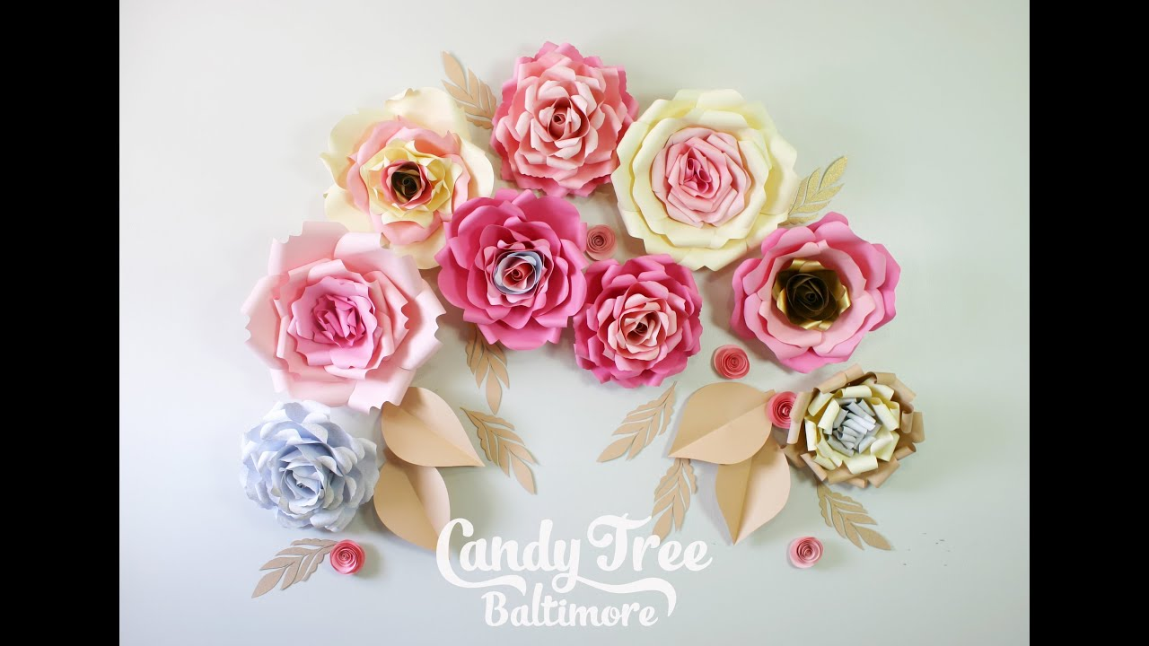 Diy Paper Rose Backdrop Tutorial Lesson No1 Youtube