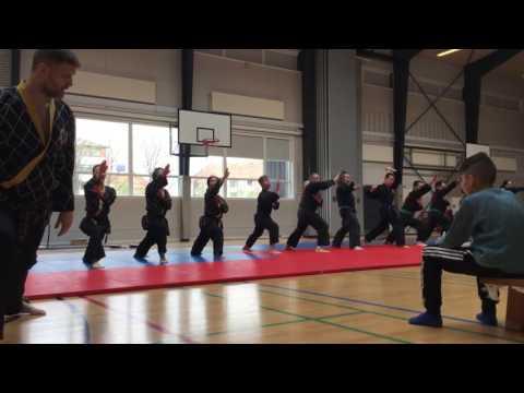 Shinson Hapkido Hvidovre åbent hus opvisning