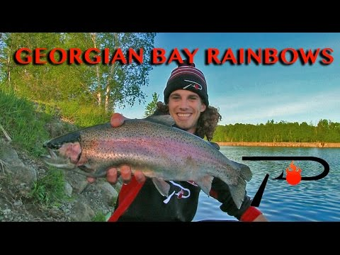 Georgian Bay Trout Fishing