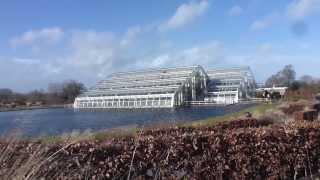 Wisley Garden  - Glasshouse  -  Gróðurhúsið í Wisley grasagarðinum