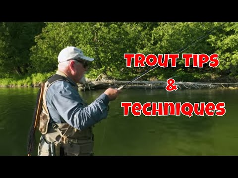 Small Stream Trout Tips & Techniques | Drift Outfitters