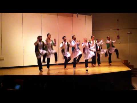Tufts University School of Medicine - Multi-Cultural Show 2012
